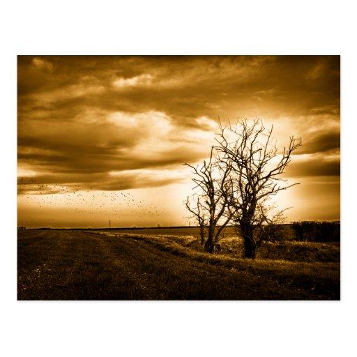 Postal del arte de dos de los árboles campos de la