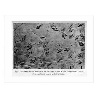 Postal del arte de las huellas del dinosaurio