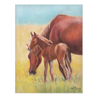 Postal del arte del caballo del potro y de la yegu