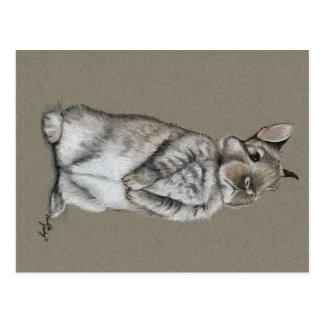 Postal del arte del conejo de conejito que se sien