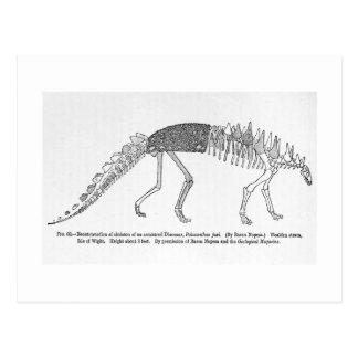 Postal del arte del foxi de Polacanthus