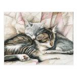 Postal del arte del gato de los gatitos el dormir