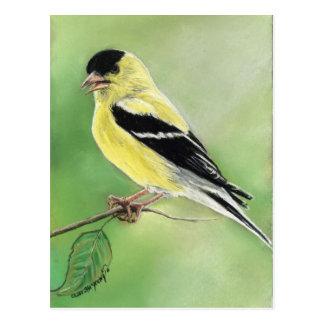 """Postal del arte del pájaro del """"Goldfinch"""""""