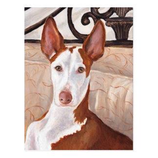 Postal del arte del perro de caza de Ibizan