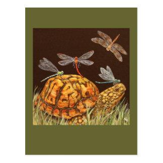 postal del autobús escolar de la tortuga