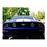 Postal del azul de Shelby del coche del músculo
