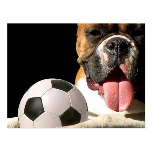 Postal del balón del boxeador y de fútbol