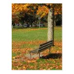 Postal del banco de parque del otoño