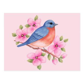 Postal del Bluebird