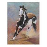 postal del caballo