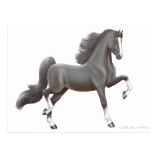 Postal del caballo de Saddlebred del americano