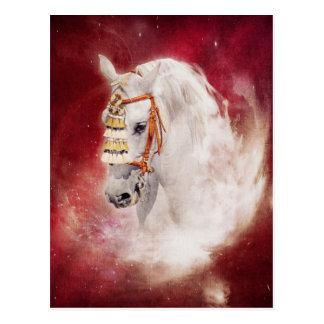 Postal del caballo del circo