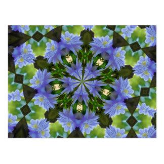 Postal del caleidoscopio de la flor del Clematis