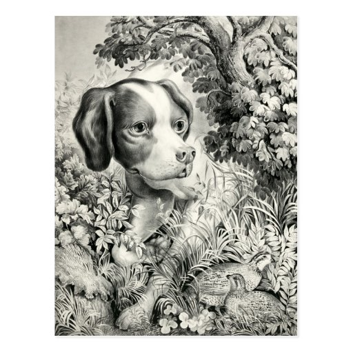 Postal del calendario del perro 2012