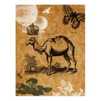 Postal del camello del vintage