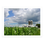 Postal del campo de maíz de Pennsylvania