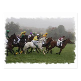 Postal del campo del caballo de raza