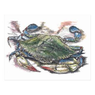 Postal del cangrejo azul