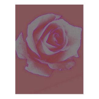 """Postal del """"capullo de rosa"""""""