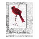 Postal del cardenal de las Felices Navidad