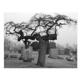 Postal del cementerio