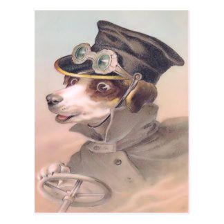 Postal del chófer del perro del vintage