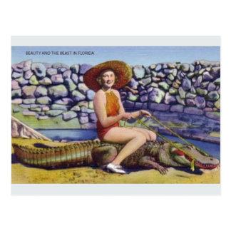 Postal del cocodrilo de la Florida del vintage
