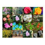 Postal del collage de la flor