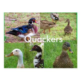 Postal del collage de Quackers