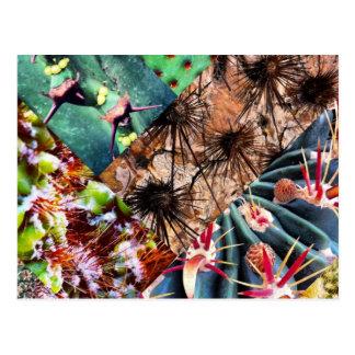 Postal del collage del cactus