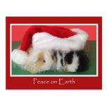 Postal del conejillo de Indias del navidad del Cav