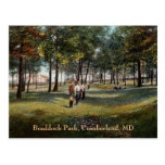 Postal del Cumberland del vintage del parque de Br