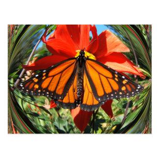 Postal del ~ de la mariposa 256