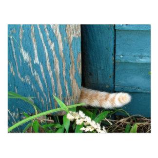 Postal del ~ del calendario de la cola de gato