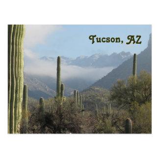 Postal del desierto de Tucson Arizona