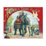 Postal del diseño del vintage del circo