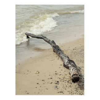 Postal del Driftwood