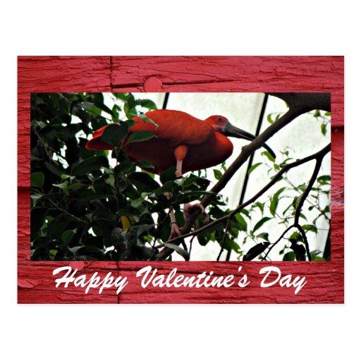 Postal del el día de San Valentín
