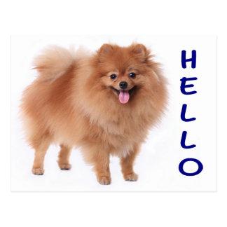 Postal del espacio en blanco del perro de perrito
