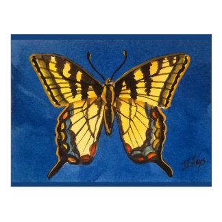 Postal del este de la mariposa del tigre