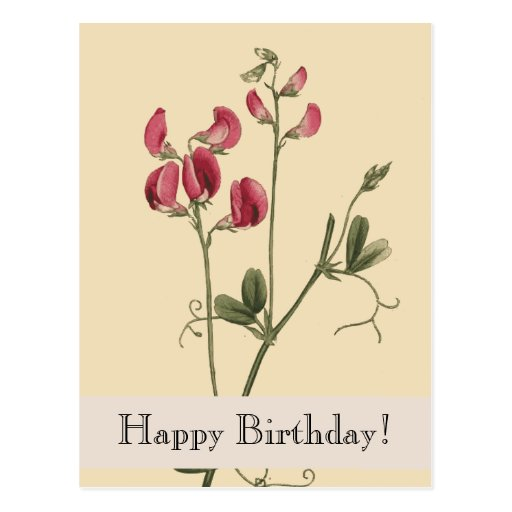 Postal del feliz cumpleaños de Botanicals del