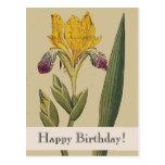 Postal del feliz cumpleaños del iris de Botanicals