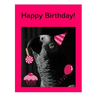 Postal del feliz cumpleaños del loro del gris afri