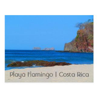 Postal del flamenco de Costa Rica Playa