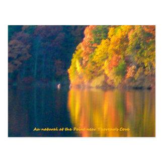 Postal del follaje del otoño de la charca de Walde
