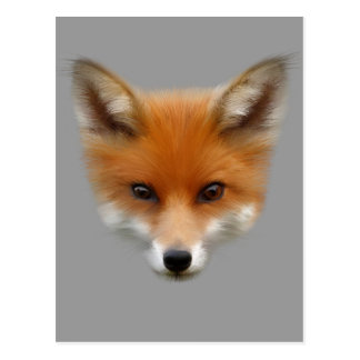 Postal del Fox rojo Cub
