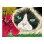 Postal del gatito de la primavera