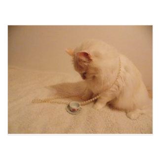 postal del gatito de la taza n de la fiesta del té