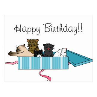Postal del gatito del feliz cumpleaños