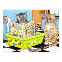 postal del gato 464